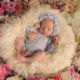 Newborn studio Newborn Alphotography Newry ireland Down Armagh